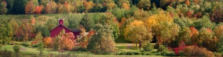 cropped-red-barn-in-autumn-forest1.jpg